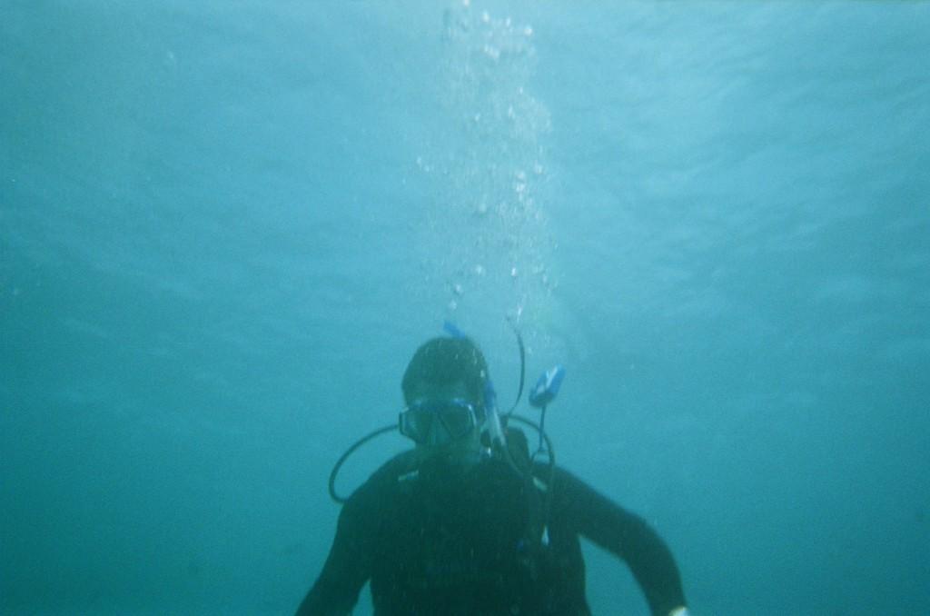 Snorkel & Scuba (46)