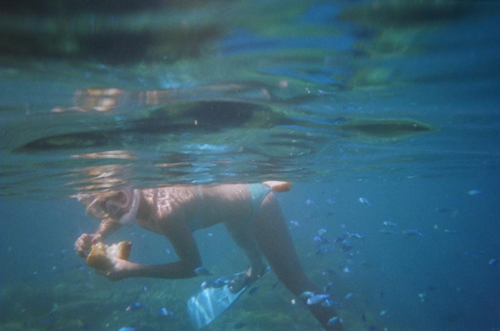 Snorkel & Scuba (79)