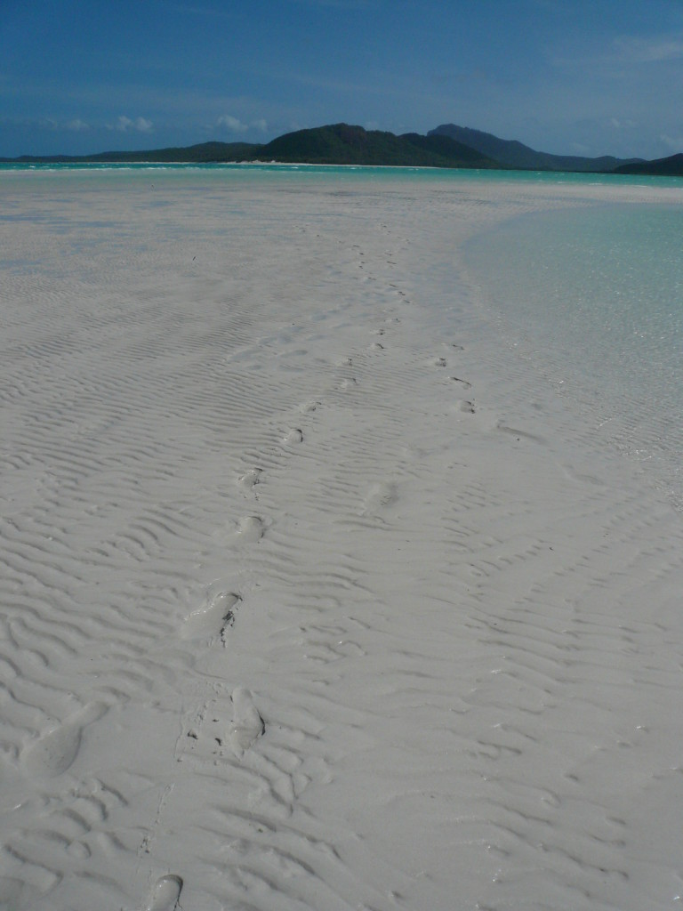 Whitsunday Islands & GBR January 2007 (85)
