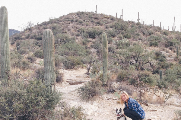 hiking in tucson