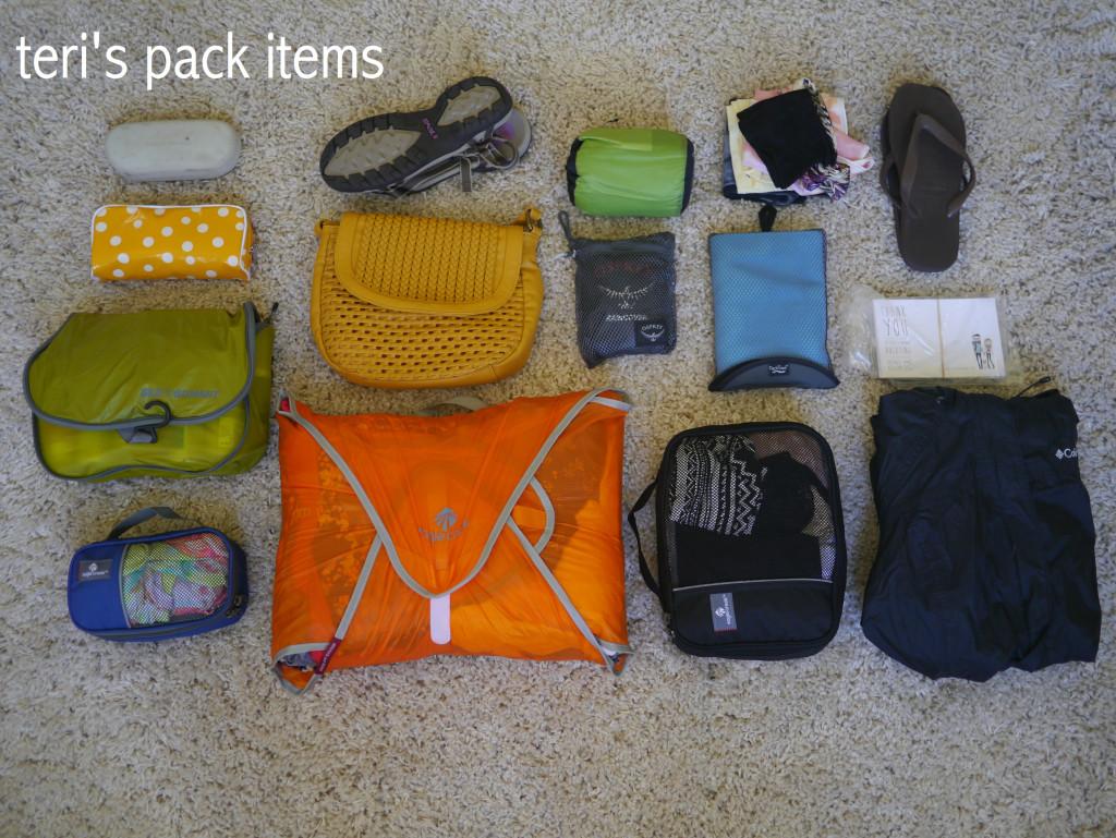 teri's pack