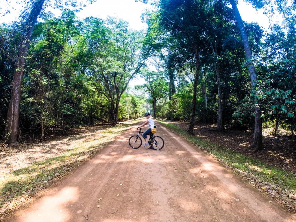 grasshopper bike tour angkor war