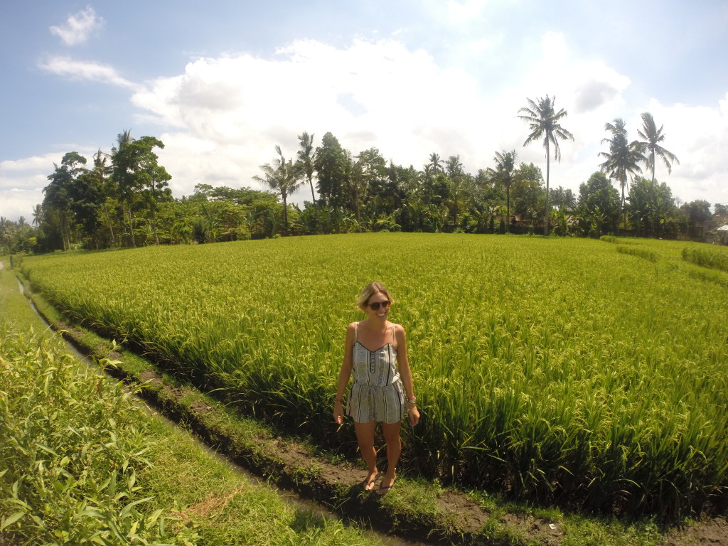 travel guide ubud, indonesia